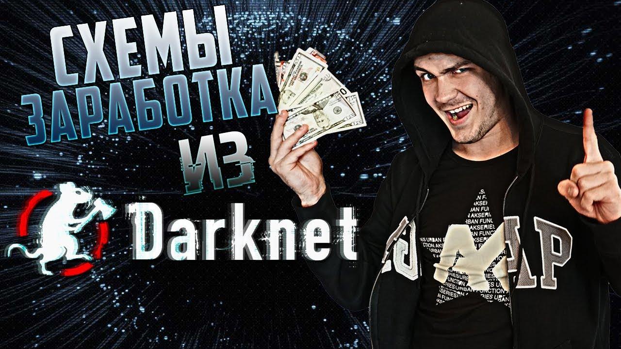 3 безумные схемы заработка из darknet