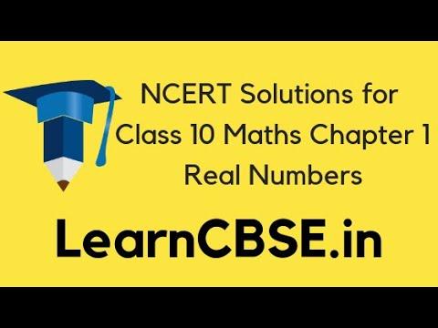 ncert solution of maths class 10 chapter 1