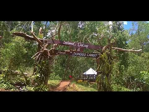 Hutan Pinus Mangunan & Puncak Songgo Langit  - Bantul, Indonesia - Travel Jogja with Lek Mus