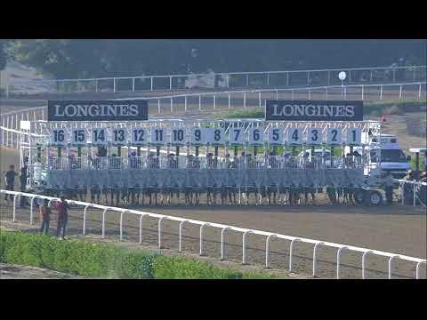 Sharjah 23/12/17 Race 5