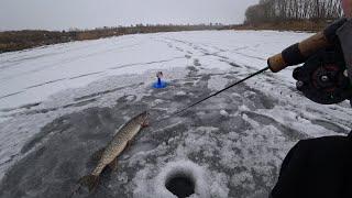 Лёд 2020-2021! Ловля щуки на жерлицы зимой! Рыбалка на балансир.