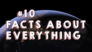 Top 10 | Facts About Everything You Need
