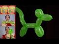 Como hacer un perrito con globos largos - globoflexia facil - perrito facil con globos