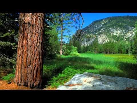 Archangel Uriel: The Soul Energy Imprint & Your Life Purpose - December 16, 2013