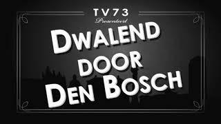 Dwalend door Den Bosch - Juwelier Schutte Rosmalen