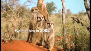 BBC Two - Attenborough 60 Years In The Wild - Full Trail