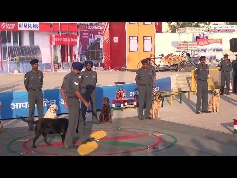 NDRF : Programme : National Disaster Response Force : Pragati Maidan Trade Fair 2013 : New Delhi