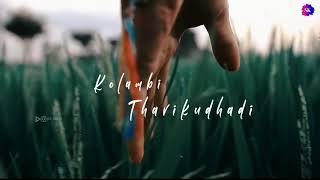 Aadukalam - Ayyayo Tamil lyrics video | Dhanush | G.V. prakash kumar | Tamil whatsapp status song🎧
