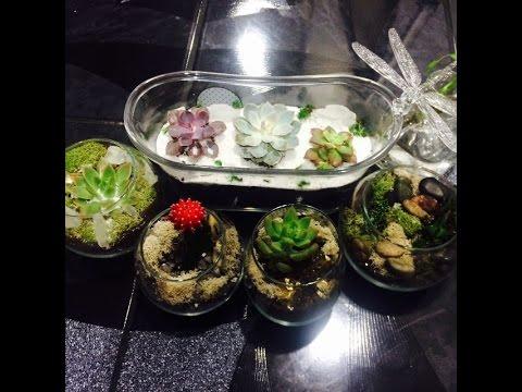 Diy Succulent And Cactus Terrarium Room Decor Ideas
