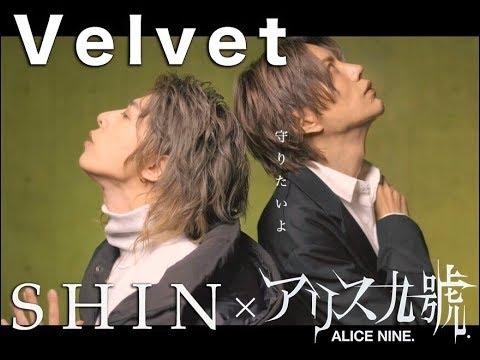 【神回】ついにご本人がやってきた!!SHINと将が歌うアリス九號【Velvet】