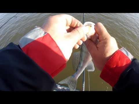 выбрать спиннинг для ловли на отводной поводок