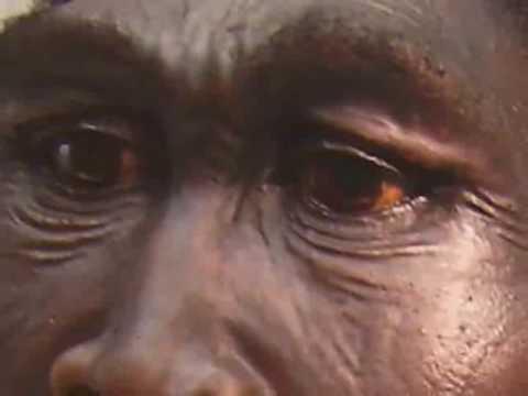 Interracial Alien Genetic DNA Manipulation