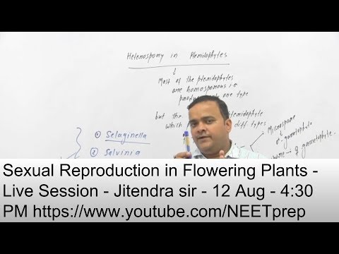 12 Aug - 4:30 PM - Sexual Reproduction in Flowering Plants - Live Session - Jitendra Sir - NEET 2019 thumbnail