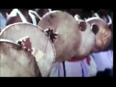 Jimikki Kammal Song Sarathkumar Version