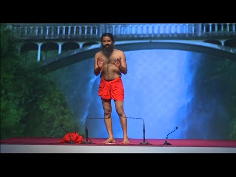 World Trade Center - Dubai: Swami Ramdev | International Yoga Day | 19 June 2016 (Part 2)