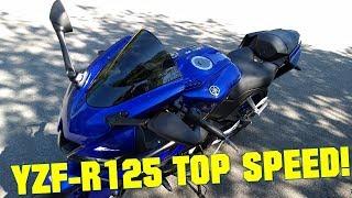 2019 Yamaha YZF-R125 TOP SPEED + GPS TOP SPEED!