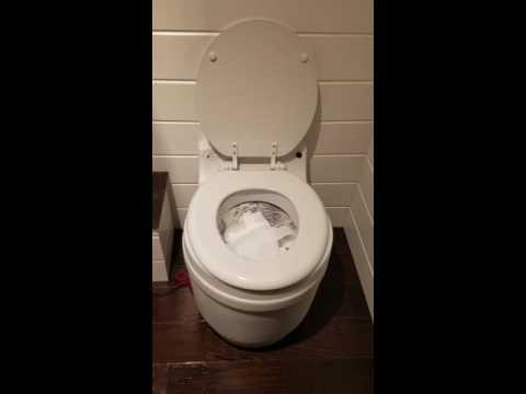 Exceptional Laveo Dry Flush Flushing Demo