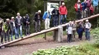 A group of retired people having fun on a giant seesaw in Switzerla...