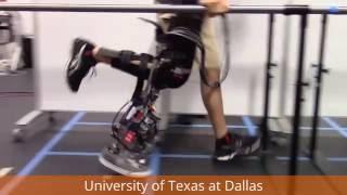 Forward and Backward Walking on the UT Dallas Powered Prosthetic Leg