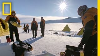 Tea...For Dinner?: A Day in the Life of a Scientist | Continent 7: Antarctica