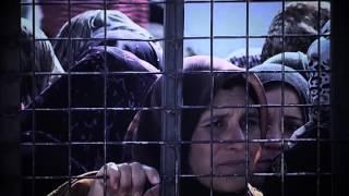 برومو تحت المجهر- شقاء اللجوء