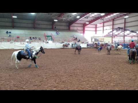 Team roping in Athens (texas)