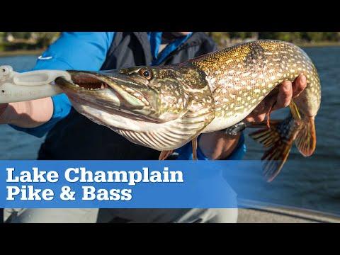 Lake Champlain Pike And Bass | S15 E06