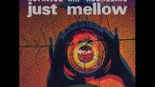 "Ruthless Rap Assassins - Just Mellow (Norman Cook 7"" Remix).wmv"