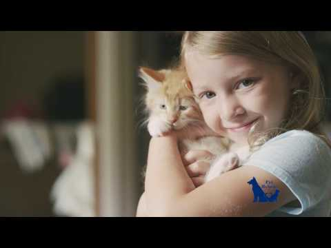 Pet Refuge   Where New Beginnings Have Happy Endings