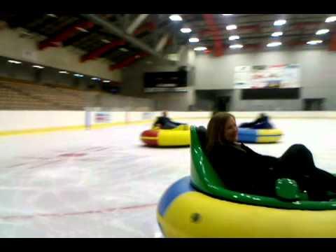 David S Palmer Arena Bumper Cars