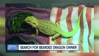 Top stories: Leadville wildfire, murder suspect, pet dragon