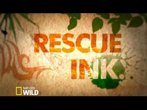 Motion Graphic (NGW --- RESCUE INK)
