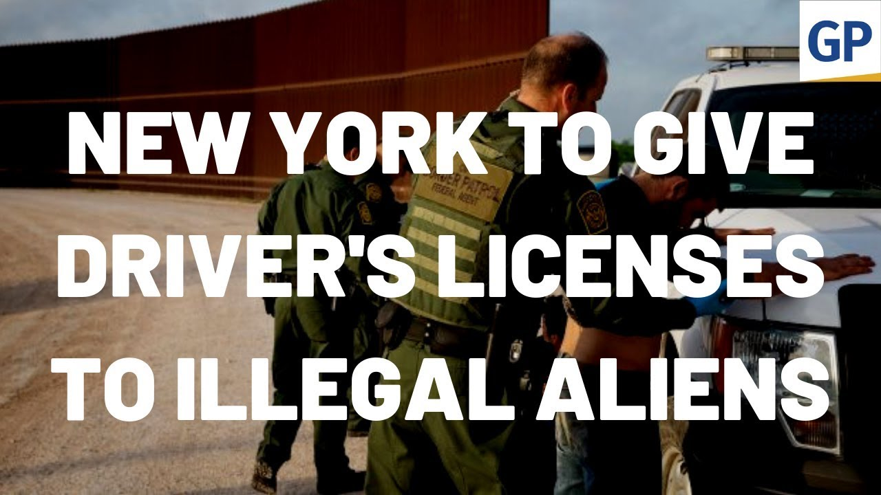 Image result for DISGUSTING: New York State Senate Passes Bill Allowing Illegal Aliens To Receive Driver's Licenses (VIDEO)