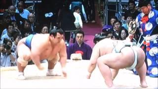 平成28年大相撲九州場所 11月19日 満員御礼 Sumo -Kyushu Basho.