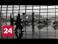 Бесплатные авиабилеты: новая уловка мошенников
