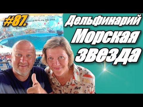 ДЕЛЬФИНАРИЙ МОРСКАЯ ЗВЕЗДА / ЛАЗАРЕВСКОЕ 2019 / ОТДЫХ НА МОРЕ