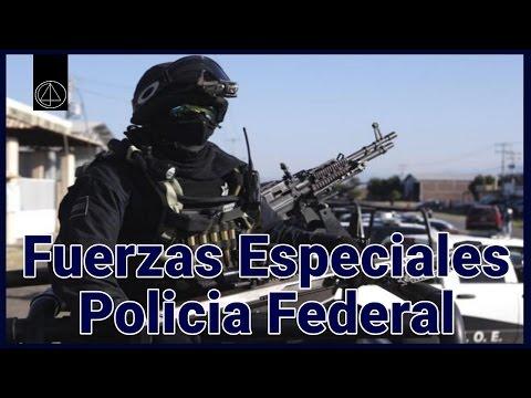 Las Fuerzas Especiales De La Policía Federal (GEO)
