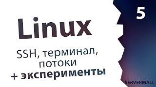 #5. Практика по терминалу / Linux