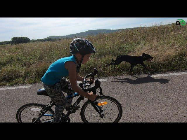 Aventuri pe bicicleta : cu Alex (Joia Mare - Sebis) Partea 2