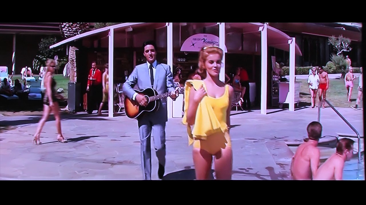 Image result for Elvis presley viva las vegas you tube