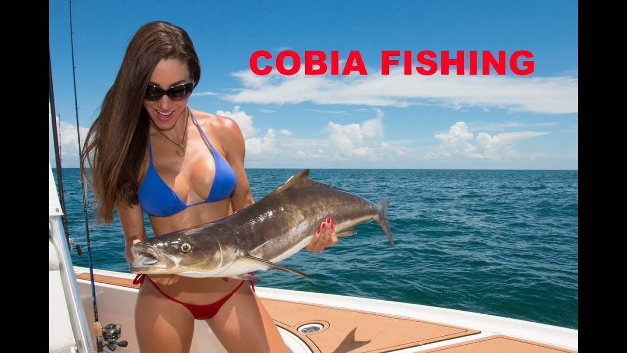 catching-cobia-in-florida
