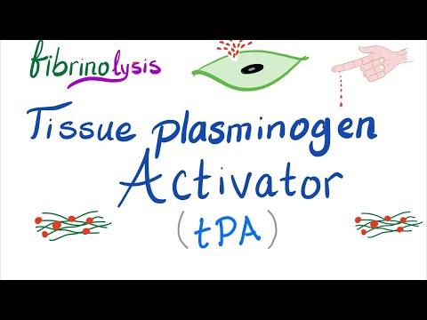 Download Tissue Plasminogen Activator (tPA)