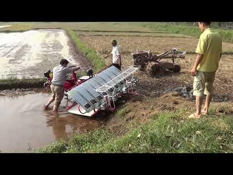 HD vận hành máy cấy lúa HAMCO tại Tân Dân - Sóc Sơn - Hà Nội