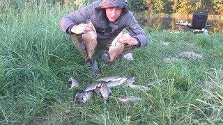 Ловля Леща Ночью на Фидер. Река. Рыбалка Брест.