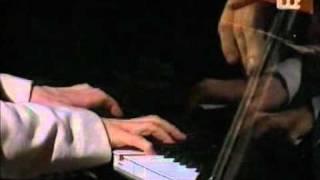 ZORAN ŠKRINJAR plays: The Summer Knows (M.Legrand)