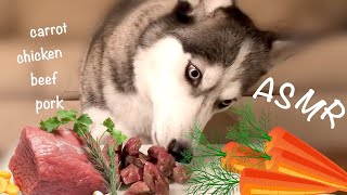 ASMR Dog Reviewing Raw Meets and Carrots | LAIKASMR #1