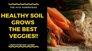 Healthy Soil Grows Tasty, Nutrient Dense Veggies! Permaculture soil formation.
