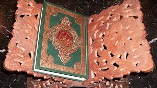 بالفيديو  تعرف على قصة جبل القرآن في باكستان