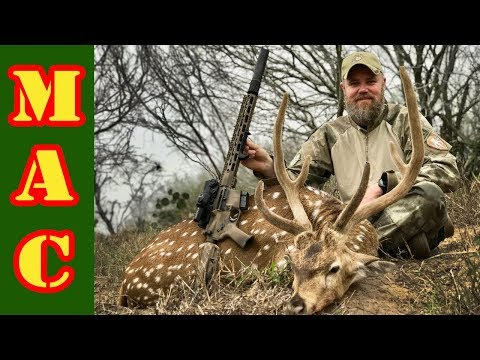 Axis Buck hunt with a 6.5 Grendel BCI Defense AR15