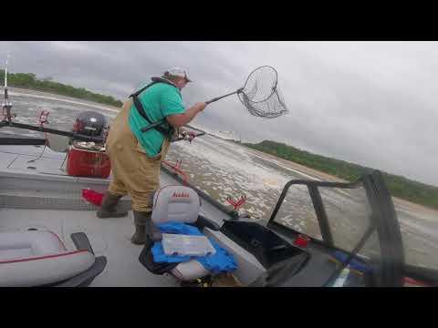 55 Pound Blue Catfish Fight On Arkansas River
